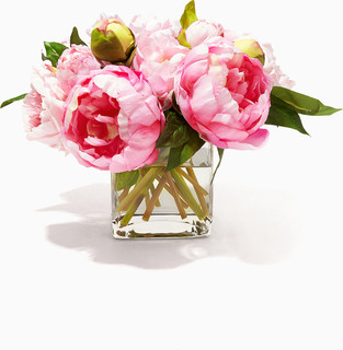 NDI Pink Peony Rose Bouquet in Glass Cube Vase