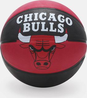 spalding nba chicago bulls team bull basketball