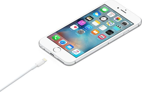 Apple Lightning to USB Cable MD818ZM