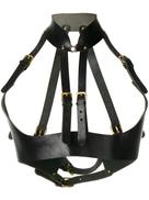 Absidem harness braces