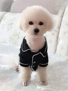 PETSIN Contrast Binding Button-Up Dog PJ Top