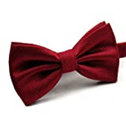Other Men Solid Bow Tie