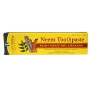 Organix South، TheraNeem Naturals ، علاج النيم بالقرفة ، معجون أسنان النيم ، 4.23 أونصة 120 جم